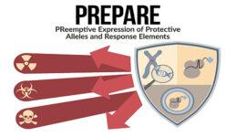 PREPAREFinalArtwork619-316a