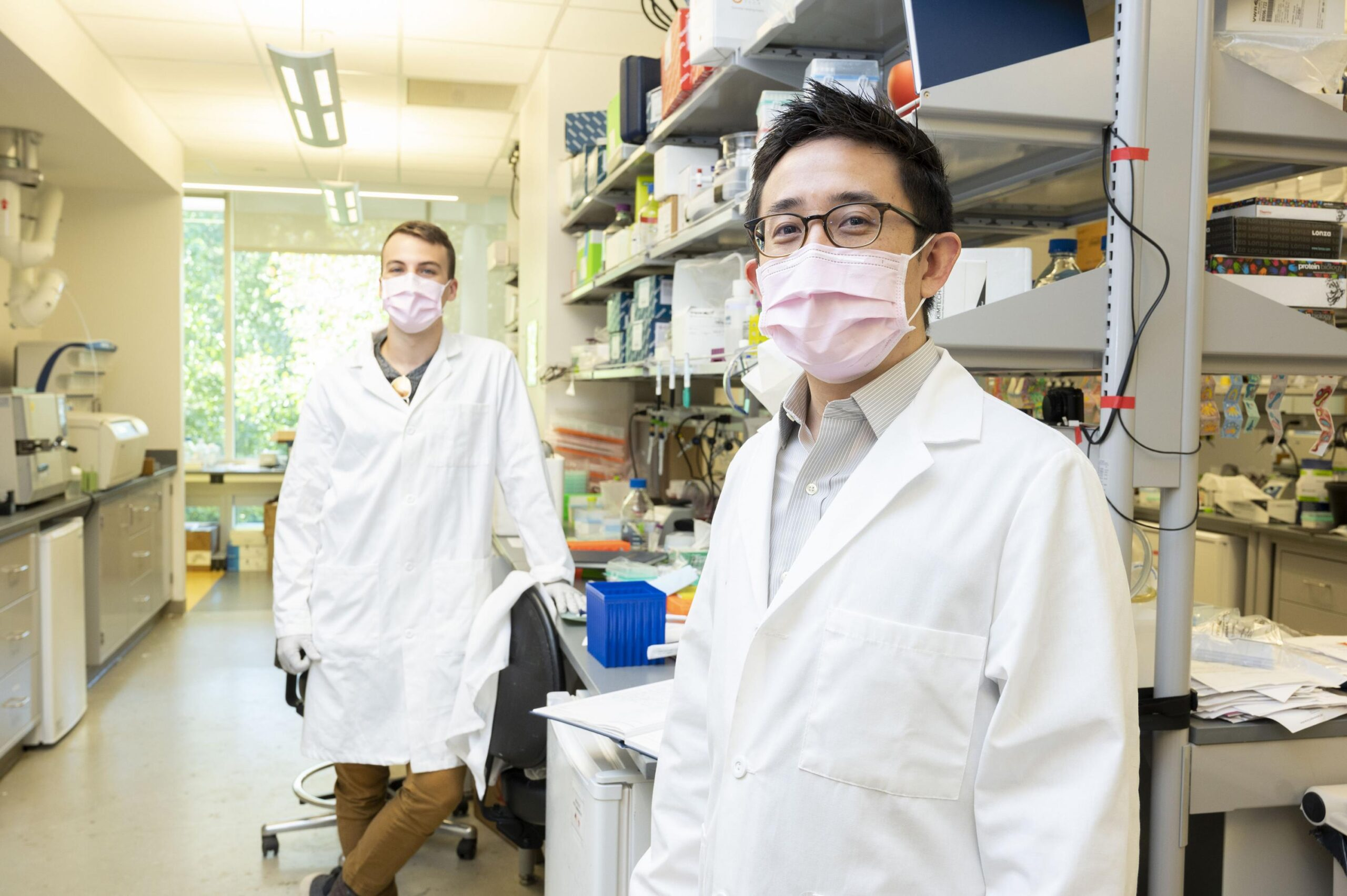 'Programmable Medicine' is the Goal for New Bio-circuitry Research